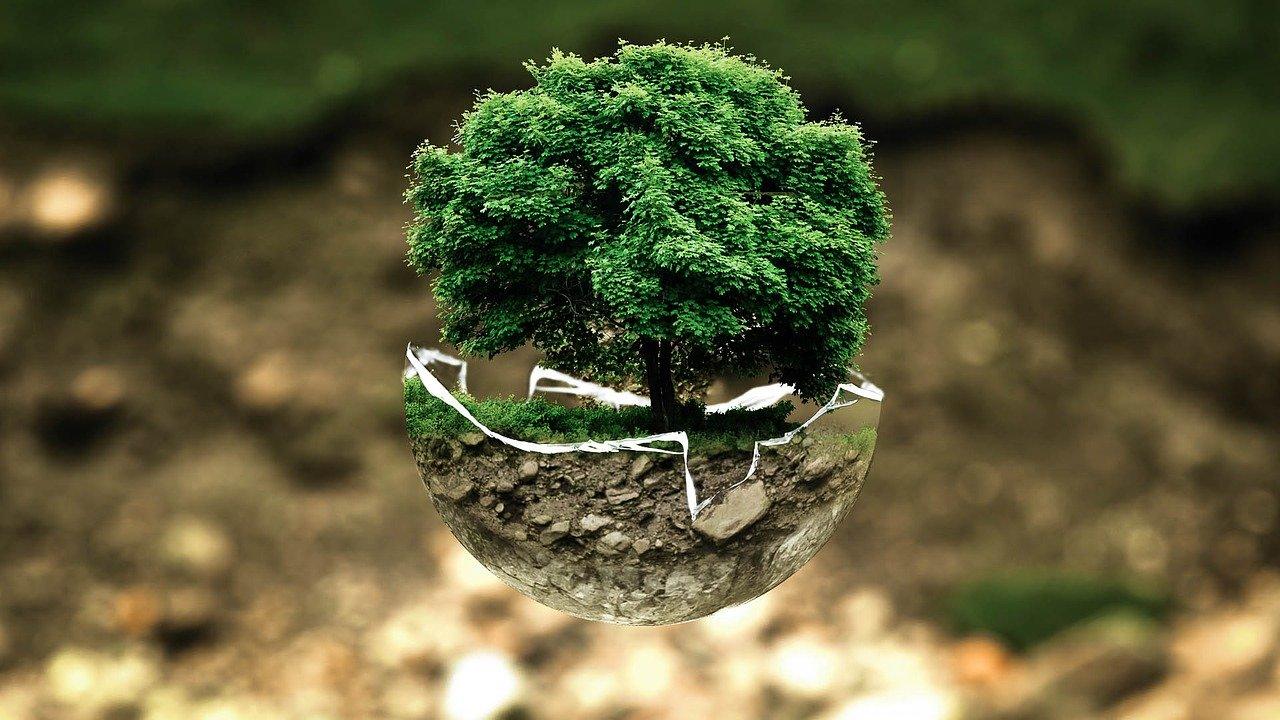 enjeux développement durable